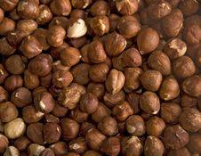 Free Hazelnut Background Stock Photography - 6656452
