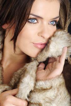 Free Beautiful Girl Wearing Brown Fur. Royalty Free Stock Photo - 6656655