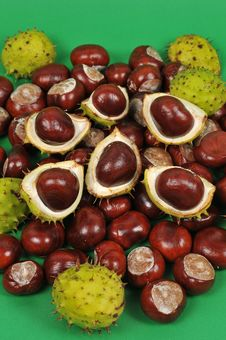 Free Chestnuts Series, Fall Is Coming Stock Image - 6658971