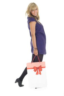 Free Pretty Blonde Carrying Bag Royalty Free Stock Image - 6659146
