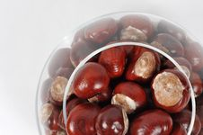 Free Beautiful Chestnuts Background Stock Photos - 6659153