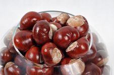 Free Beautiful Chestnuts Background Royalty Free Stock Image - 6659216