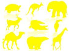Free Wildlife Stock Photography - 6659352