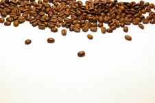 Free Coffee Seeds Stock Photos - 6659463