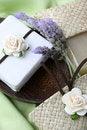 Free Soap Dish Stock Photos - 6665313