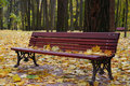 Free Bench In Autumn Park Stock Photo - 6669970