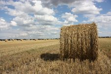 Free Bales Of Straw Stock Photography - 6660072