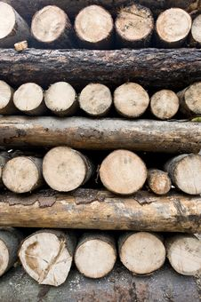 Free Woodpile Composition Royalty Free Stock Photos - 6661448