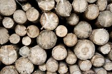 Free Woodpiles - Plain View Royalty Free Stock Photos - 6661488