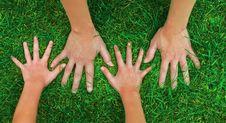 Free Hands Stock Photo - 6661710