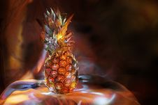 Free Pineapple Stock Photography - 6661992
