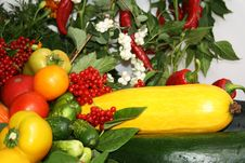 Free Vegetable Still Life Royalty Free Stock Photography - 6663397
