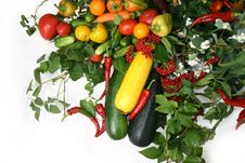 Free Vegetable Still Life Stock Photo - 6663420