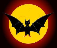 The Bat Royalty Free Stock Photography