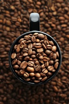 Free Coffee Mug Stock Image - 6664231