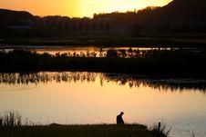 Free Sunset Royalty Free Stock Image - 6664616