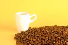 Free Coffee Stock Photos - 6664653