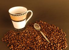 Free Coffee Royalty Free Stock Images - 6664669