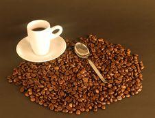 Free Coffee Stock Photo - 6664670