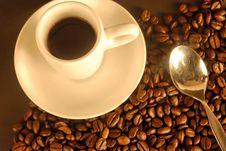 Free Coffee Stock Photos - 6664703