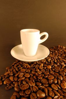 Free Coffee Stock Images - 6664704