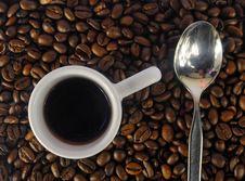 Free Coffee Stock Photos - 6664793
