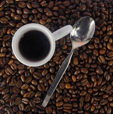 Free Coffee Royalty Free Stock Photo - 6664845