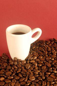 Free Coffee Royalty Free Stock Photos - 6665018