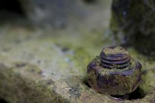 Rusty Screw Royalty Free Stock Images