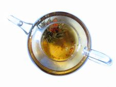 Free Glass TeaPot With Bloom Tea Stock Image - 6665241
