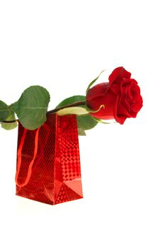 Free Gift Box And Rose, Isolated Royalty Free Stock Photos - 6665448