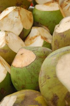 Free Coconuts Royalty Free Stock Images - 6666159
