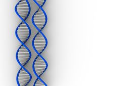 Free DNA Structure Royalty Free Stock Images - 6668389