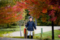 Free Girl And Red Autumn Trees Royalty Free Stock Photos - 6679918