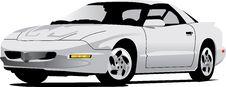 Free White Firebird Royalty Free Stock Image - 6670056