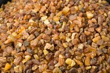 Free Tiny Ambers Stock Photo - 6670420