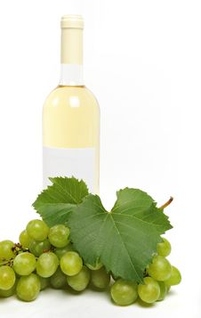 Free Wine And Grapes Stock Image - 6671921