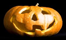 Free Pumpkin Royalty Free Stock Images - 6672019