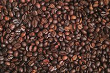 Free Coffee Beans Stock Photos - 6672113