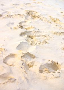 Free Sandy Footprints Stock Image - 6672721