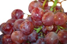 Free Red Grape. Royalty Free Stock Images - 6674509