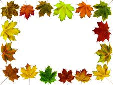 Free Leaves Frame 1 Stock Photo - 6674740