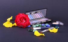 Free Eyeshadiw And Rose Stock Image - 6674741