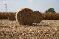 Free Bale Stock Photo - 6676450