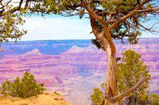 Free Grand Canyon Stock Photos - 6677803