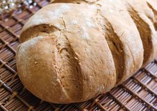 Free Homemade Bread Stock Image - 6677821