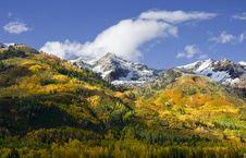Free Autumn Splender Stock Photo - 6679080