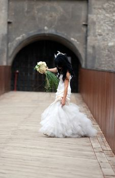 Free Bride Holding Her Dress Royalty Free Stock Photo - 6679605