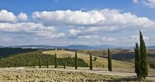 Free Tuscan Landscape Royalty Free Stock Image - 6679916