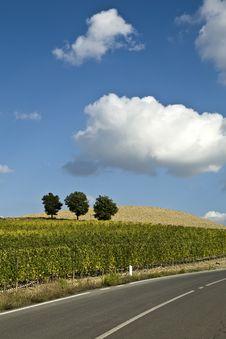 Free Tuscan Landscape Stock Image - 6679991